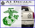 Marine Globe Decal Sticker Green Vinyl Logo 120x97