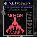 Molon Labe Spartan Cross Rifles Decal Sticker Pink Vinyl Emblem 120x120