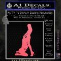 Sexy Lesbians Decal Sticker Pink Emblem 120x120